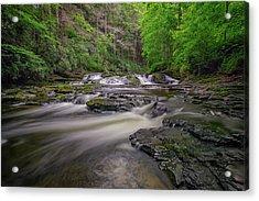 Dingmans Creek IIi Acrylic Print by Rick Berk