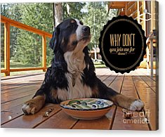 Acrylic Print featuring the digital art Dinner With My Dog by Kathy Tarochione