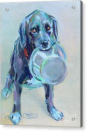 Dinnertime Dutchess Acrylic Print by Kimberly Santini