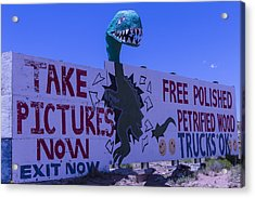 Dinosaur Sign Take Pictures Now Acrylic Print