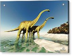 Dinosaur World Acrylic Print by Corey Ford