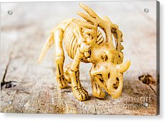 Dinosaurs At The Toy Museum  Acrylic Print