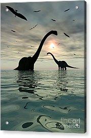 Diplodocus Dinosaurs Bathe In A Large Acrylic Print by Mark Stevenson