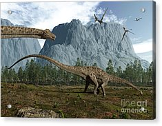 Diplodocus Dinosaurs Graze While Acrylic Print by Walter Myers