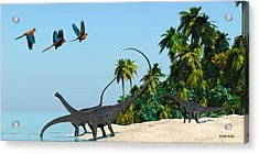 Diplodocus Drinking Acrylic Print by Corey Ford