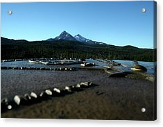 Acrylic Print featuring the photograph Directional Points by Laddie Halupa