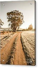 Dirt Frosted Country Road In Winter Acrylic Print