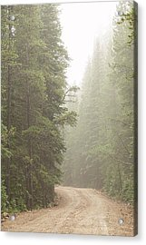 Acrylic Print featuring the photograph Dirt Road Challenge Into The Mist by James BO Insogna