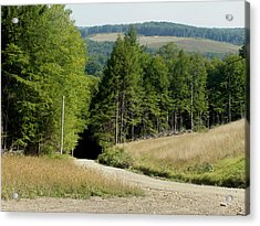 Acrylic Print featuring the photograph Dirt Road Through The Mountains by Jeanette Oberholtzer
