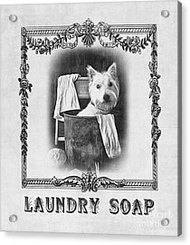 Dirty Dog Laundry Soap Acrylic Print by Edward Fielding