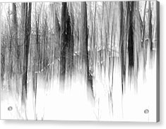 Acrylic Print featuring the photograph Disappearance by Steven Huszar