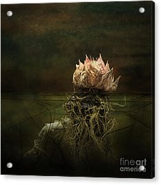 Disconnected Acrylic Print by Jan Piller