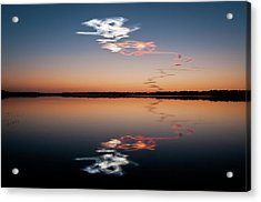 Discovered Acrylic Print by Mark Englert