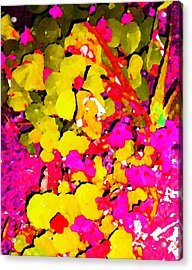 Discovering Joy Acrylic Print