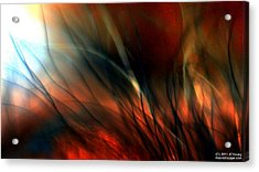 Distant Fire Acrylic Print by JCYoung MacroXscape