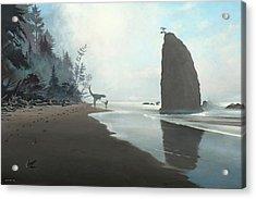 Distant Shores Acrylic Print