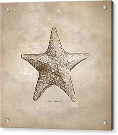 Distressed Antique Nautical Starfish Acrylic Print