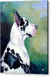 Diva The Great Dane Acrylic Print by Lyn Cook