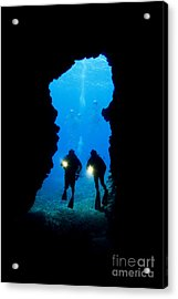 Divers Silhouetted Through Reef Acrylic Print by Dave Fleetham - Printscapes