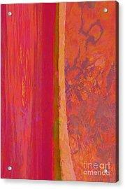 Divided Acrylic Print by Robert Ball