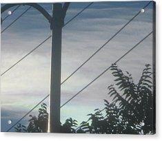 Dividing Lines Acrylic Print by Jennifer Wall