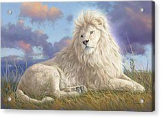 Divine Beauty Acrylic Print by Lucie Bilodeau