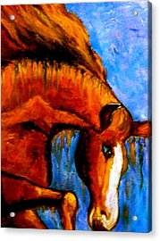Acrylic Print featuring the painting Divine Equine by Marie Hamby