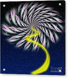 Divine Fireworks Acrylic Print by Ganesh Barad
