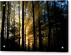 Divine Rays Of Sunshine Acrylic Print