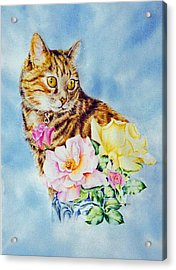 Dixie-cat Acrylic Print by Nancy Newman