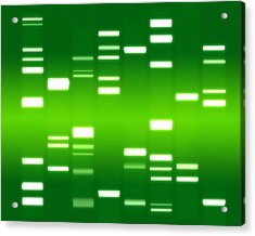 Dna Green Acrylic Print