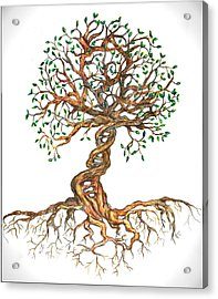 Dna Tree Of Life Acrylic Print