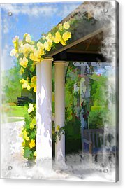 Acrylic Print featuring the photograph Do-00137 Yellow Roses by Digital Oil