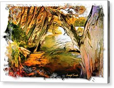 Acrylic Print featuring the photograph Do-00268 Trees On Water In Avoca Estuary by Digital Oil