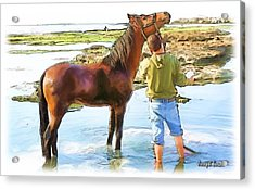 Do-00421 Washing Horse In Mina Acrylic Print