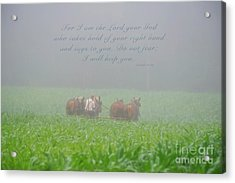 Do Not Fear I Will Help You Acrylic Print by David Arment