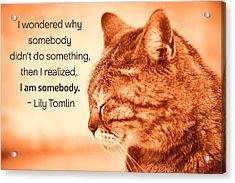 Do Something - Orange Cat Acrylic Print