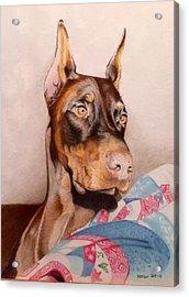 Rudy Acrylic Print by David Hoque