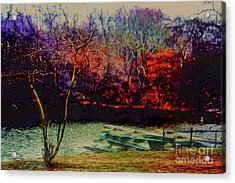 Acrylic Print featuring the photograph Dock At Central Park by Sandy Moulder