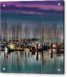 Docked Sailboats Acrylic Print by David Patterson