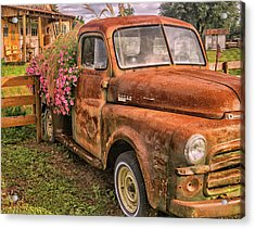 Dodge Flower Pot Acrylic Print