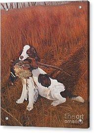 Dog And Pheasant Acrylic Print