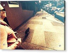 Dog Assisting Blind Woman On Urban Street Acrylic Print