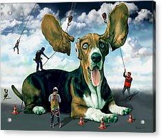 Dog Construction Acrylic Print