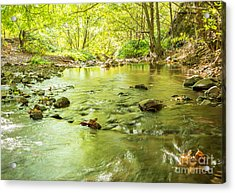 Dog Creek Acrylic Print by Linda Steider