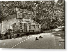 Dog Day At Rabbit Hash Sepia Tone Acrylic Print by Tri State Art
