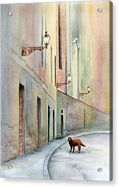Dog Days Of Vicenza Acrylic Print
