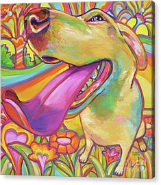 Dog Daze Of Summer Acrylic Print