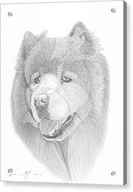 Dog Portrait Logi Acrylic Print