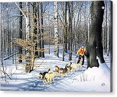 Dog-sled Racing Acrylic Print by Conrad Mieschke